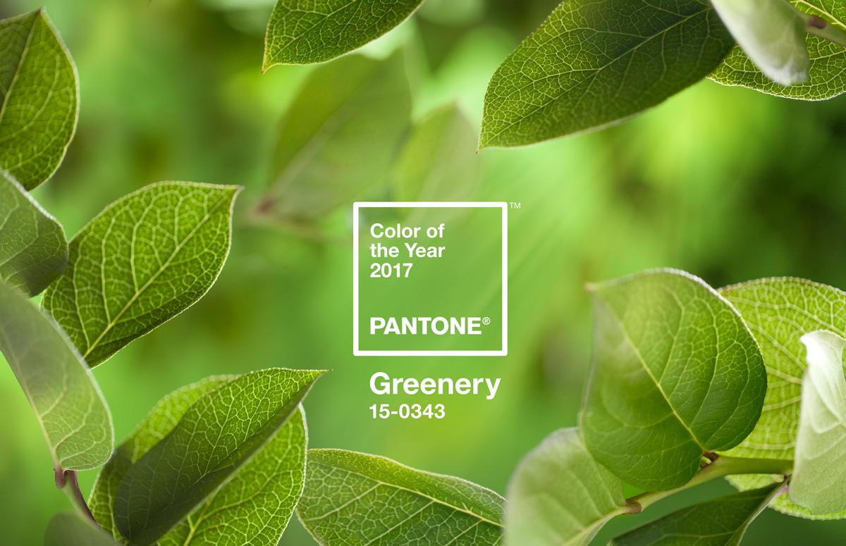 Pantone Trendfarbe 2017 Greenery