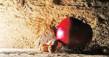 MEHR BEWUSSTSEIN FÜR SCHWERE ALLERGIEN – ANAPHYLAKTISCHER SCHOCK   Apfel und Erdnuss Allergie
