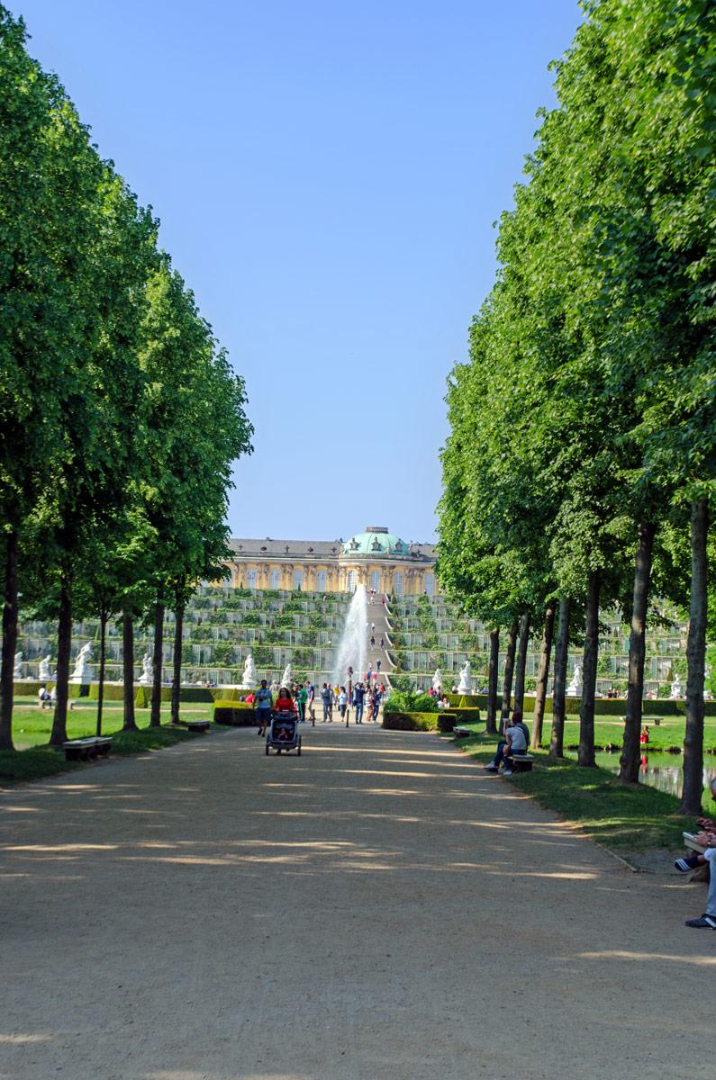 Das Geheimnis der Wein-Terrassen von Sanssouci