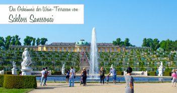 Das Geheimnis der Wein-Terrassen von Schloss Sanssouci