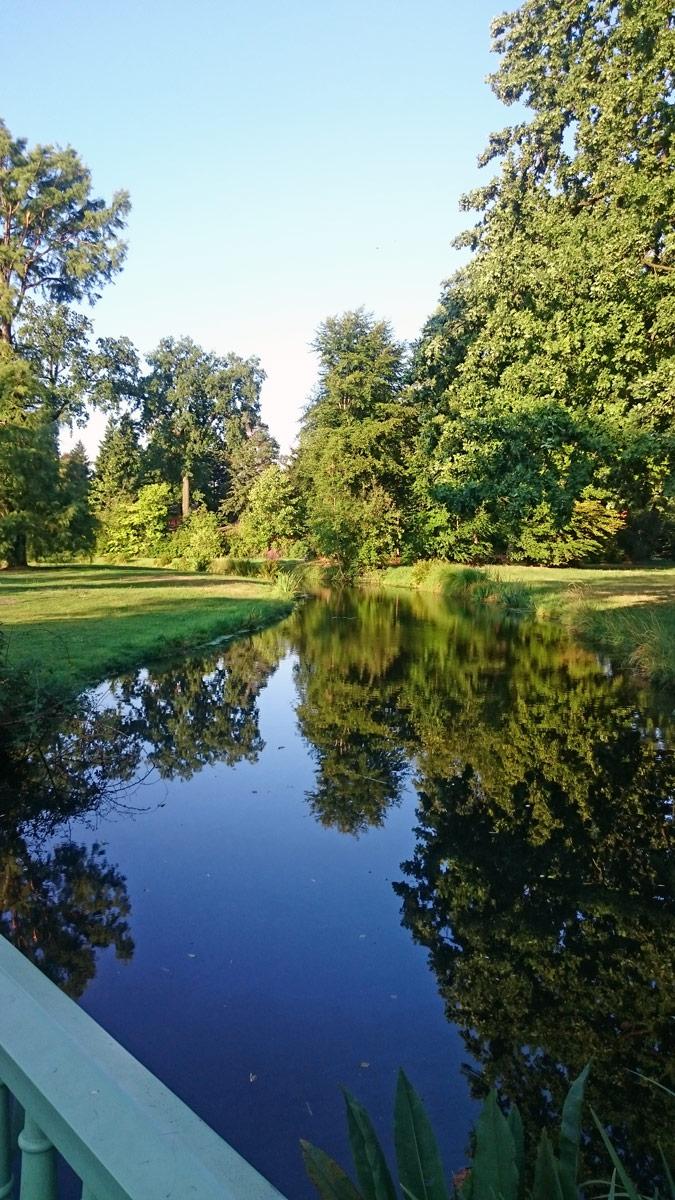 Joggen im Park Sanssouci am frühen Morgen