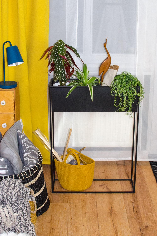 [anzeige]Urban Jungle: Plant Styling mit Plant Box