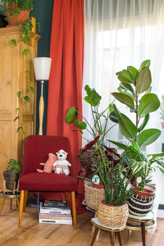 Pflegeleichte Pflanzen für dein Zuhause [unbezahlte werbung]