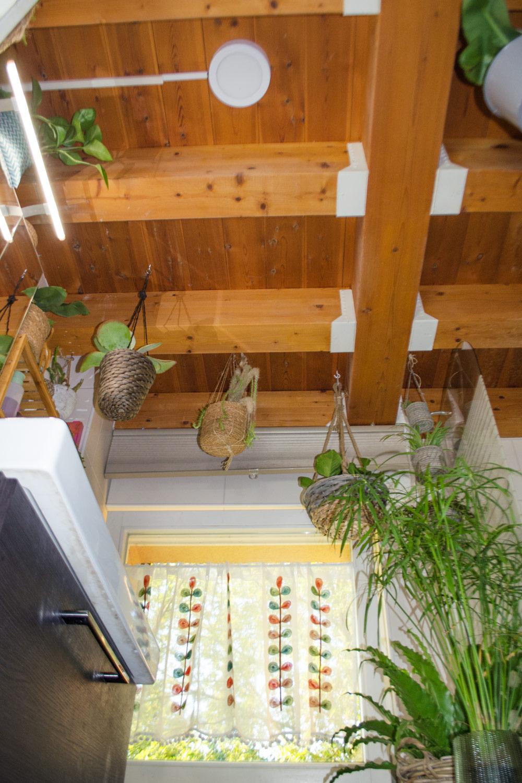 Mit Pflanzen und Deko das Bad umgestalten [unbezahlte werbung | affiliate links]