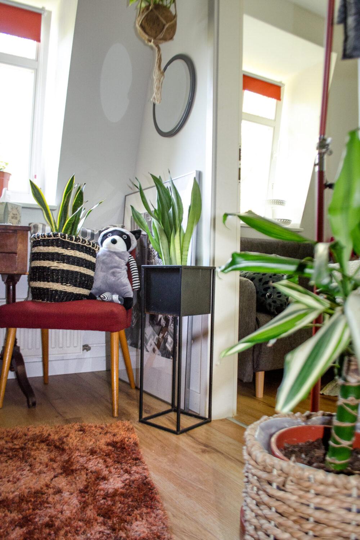 Blumenständer & Plantboxen online kaufen [unbezahlte werbung | affiliate links]