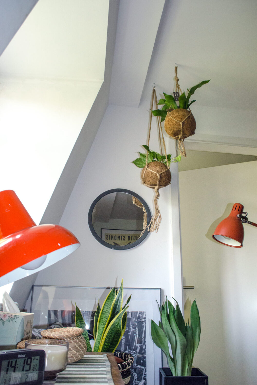 Hängepflanzen für deinen Bohemian Bedroom [unbezahlte werbung]