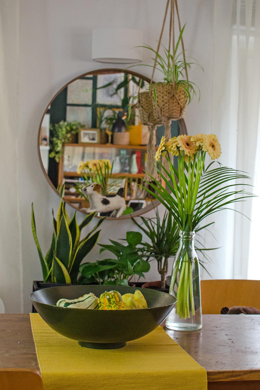 Moderne Vasen | Schlichte Blumenvasen aus Glas [unbezahlte werbung]