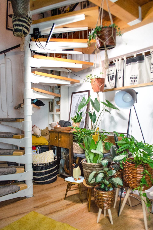 Pflanzenlampen | Unnötig oder wichtig? [unbezahlte werbung]