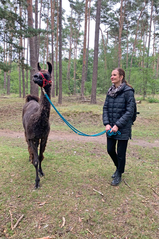 Baldur, das Lama und ich