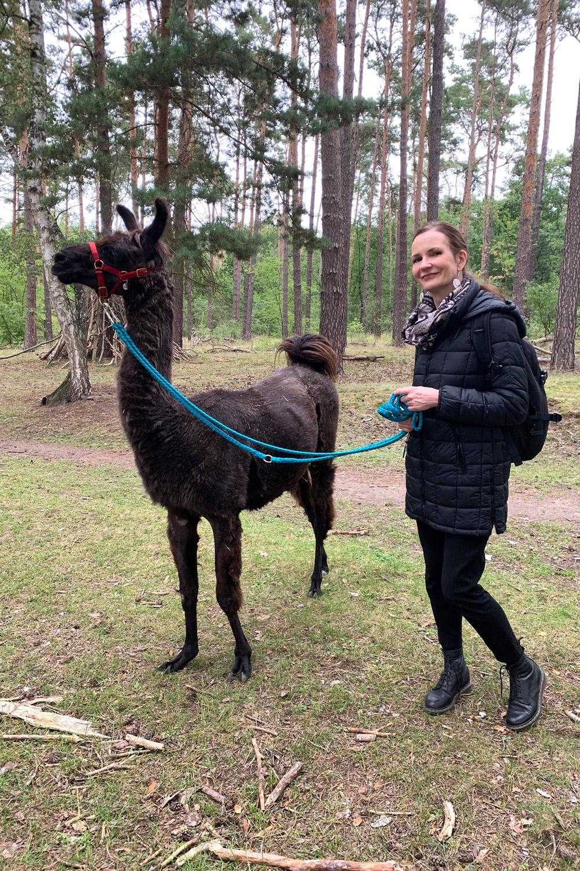 Lama und Alpaka Wanderung mit Baldur